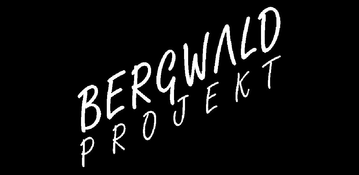 Bergwald Projekt e.V.